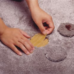 All Carpet Repair   23 Reviews   Carpet Installation   930 NW 25th     Photo of All Carpet Repair   Portland  OR  United States