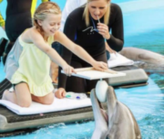 Siegfried Roys Secret Garden And Dolphin Habitat