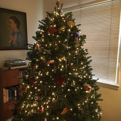mr jingle s christmas trees 10 photos 17 reviews