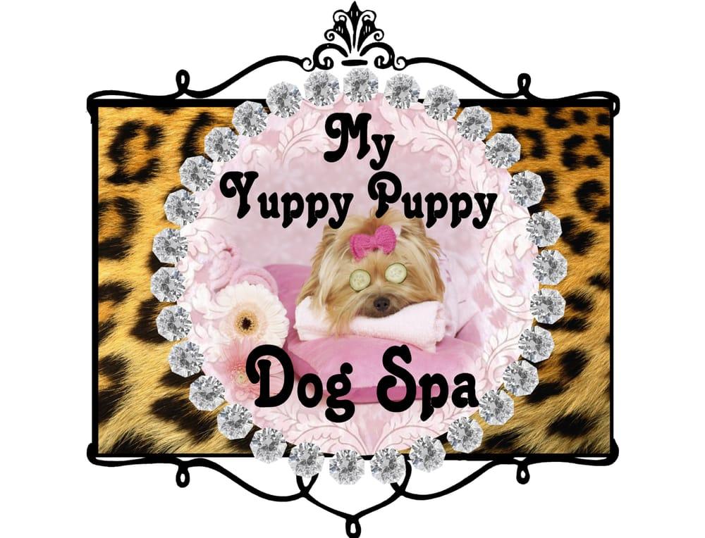 Yuppy Puppy Dog Spa