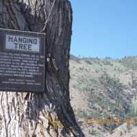The Hanging Tree - Genoa, Nevada