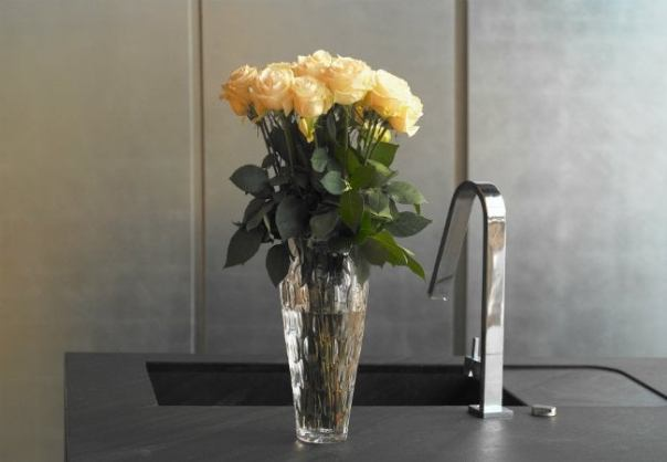 Uses of Ice - Cleaning a Vase