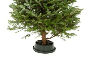 The Best Christmas Tree Stands For The Holiday Season Bob Vila