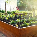 4 Best Raised Garden Bed Options For The Backyard Bob Vila