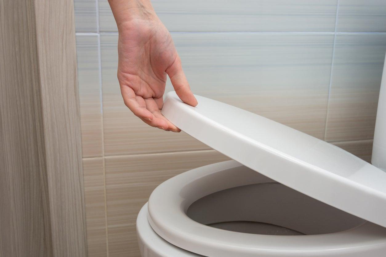 The Best Toilet Seats For Bathroom Upgrades Bob Vila