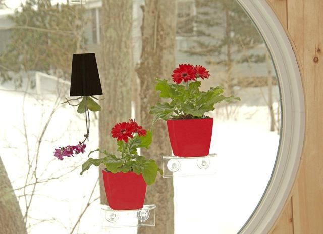 Self-watering-window-shelf-planter