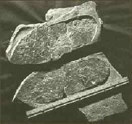 utahfootprint2