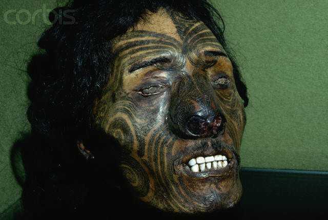 Preserved Head of Maori Chief