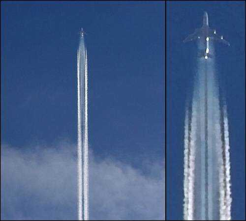 chemtrail-petition-2