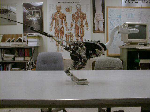 Troody_Robot_Dinosaur_PeterDilworth3