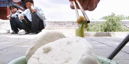 fake-mantou