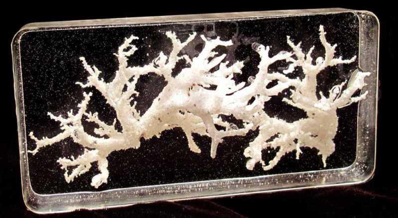 Preserved-Fulgerites-Petrified-Lightning