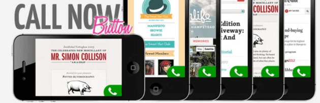 The Call Now Button plugin.