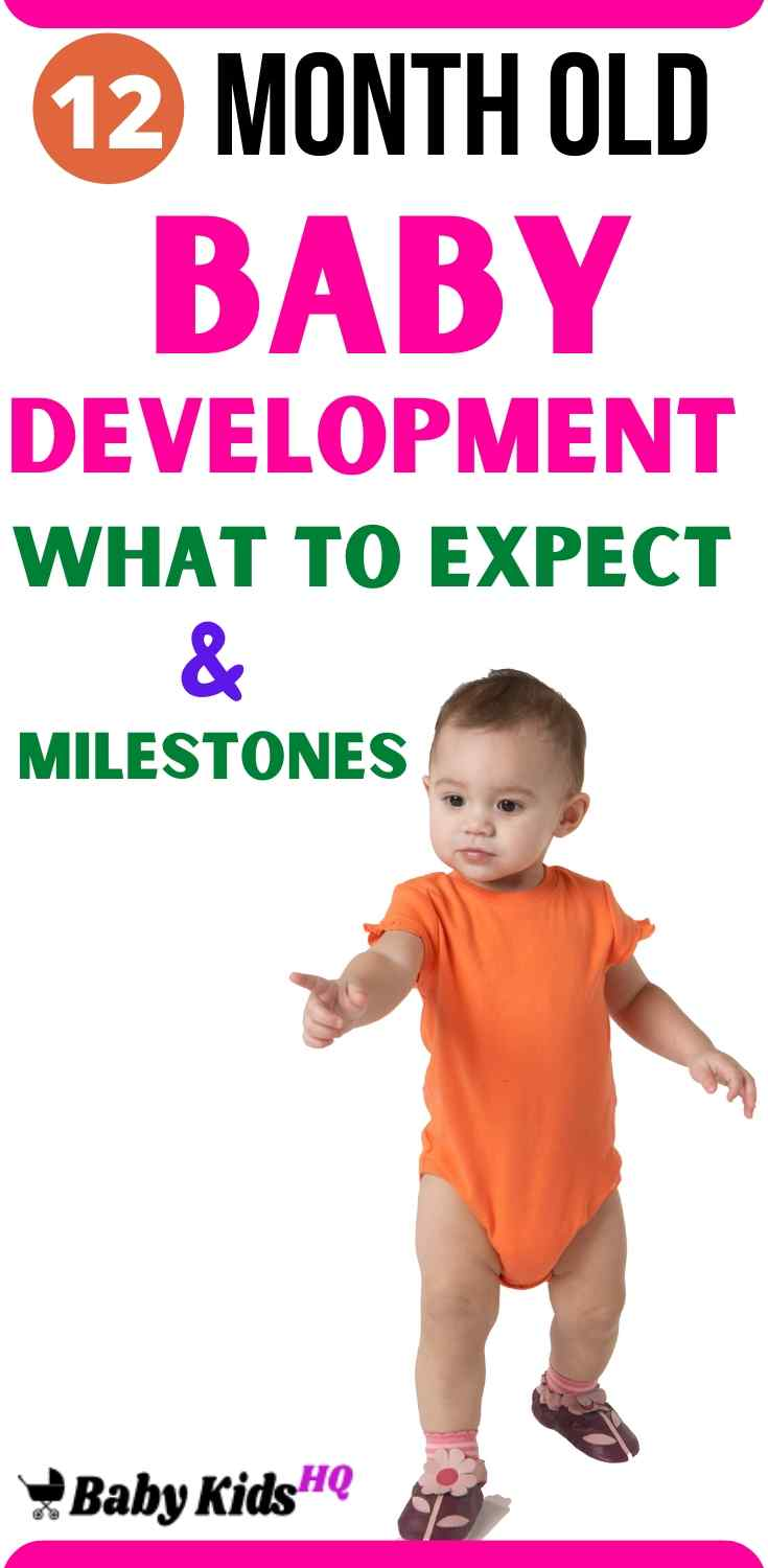 12 Month Old Baby Development:- Your baby will take those early strides on tiptoe with his feet turned outward; keep the camera ready! He may also begin feeding himself with a spoon this month. Around now your baby's play will probably start shifting from mastering his fine motor skills to exercising larger muscles. Naptime is one of the small luxuries of caring for a baby, especially if you use the downtime to rest and recharge yourself.