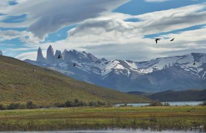 Torres del Paine Towers and birds