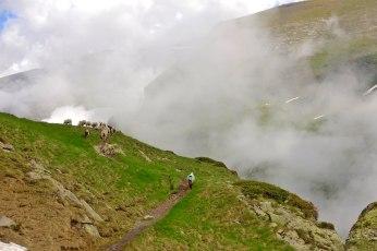 Cirque de Troumouse Clouds and Sheep