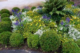 Les Pres d'Eugenie garden flowers