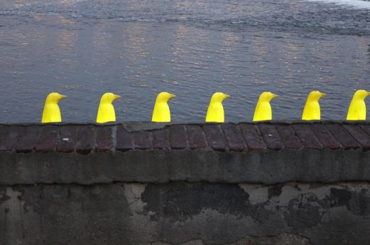 Prague penguins heads