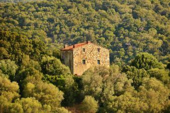 Domaine de Murtoli map house