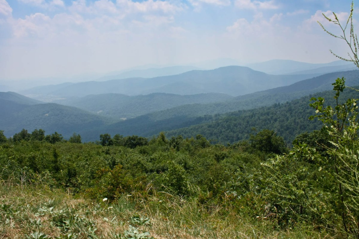 Shenandoah National Park, Blue Ridge Mountains, Virginia #vezzaniphotography