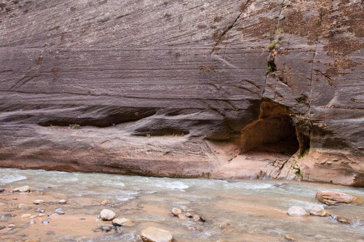 Hiking the Narrows, Zion National Park, Utah #vezzaniphotography #zionnationalpark