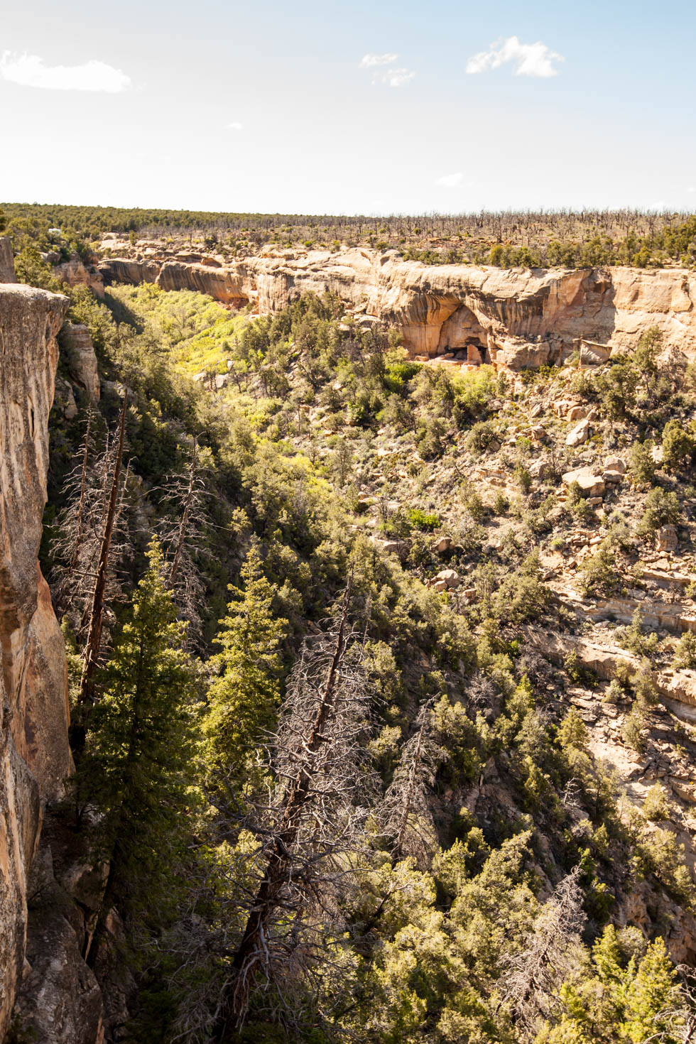 Mesa Verde National Park, Montezuma County, Colorado #vezzaniphotography