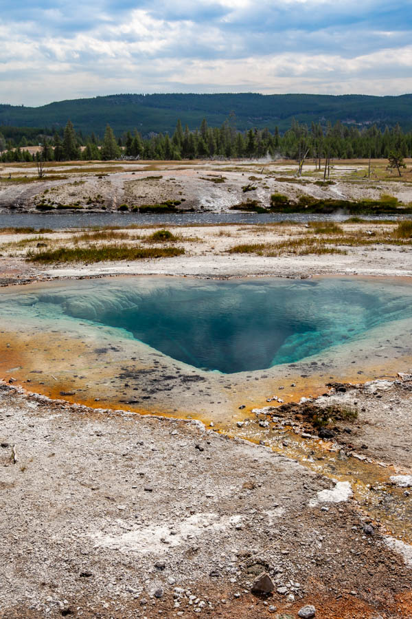 Hot Spring on the way to the Grand Prismatic Spring Overlook in Yellowstone National Park #vezzaniphotography