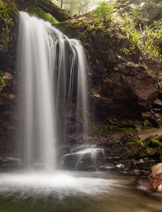 Fall in Love With Grotto Falls at Great Smoky Mountains National Park