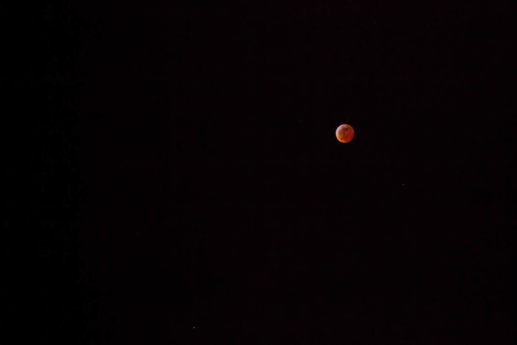 2019 Super Blood Wolf Moon Photographs #vezzaniphotography