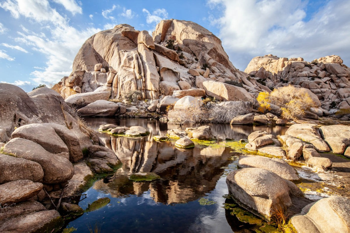 9 Must-see Locations at Joshua Tree National Park - Barker Dam #vezzaniphotography