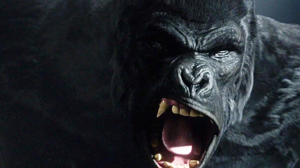 The Flash King Shark Gorilla Grodd dc comics news