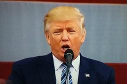 Trump Hair Mystery