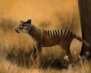 in memoriam top 10 recently extinct animals earth archives
