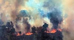 Amazonia: Incendios, holocaustos, desdén, consternación…
