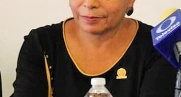 Austeridad, pide al Gobierno estatal la Diputada Lupita Salas