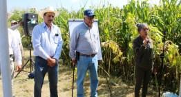 Ofrecen capacitación  para el mejoramiento de los cultivos