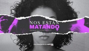 El Feminicidio,  expresión criminal de la violencia