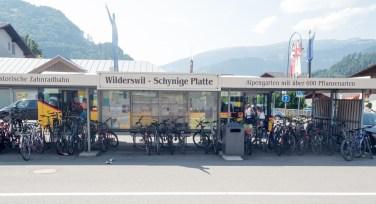 Bikes and trains