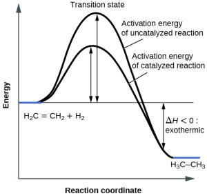 Catalysis | Chemistry