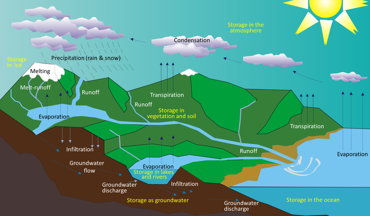13 1 The Hydrological Cycle
