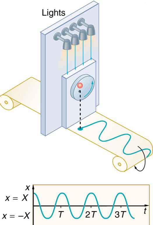 Kinetic Versus Potential Energy
