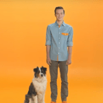 Discover the Dogtopia Difference