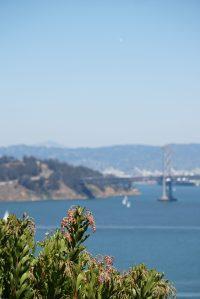 selective focus photography of gray metal bridge during daytime