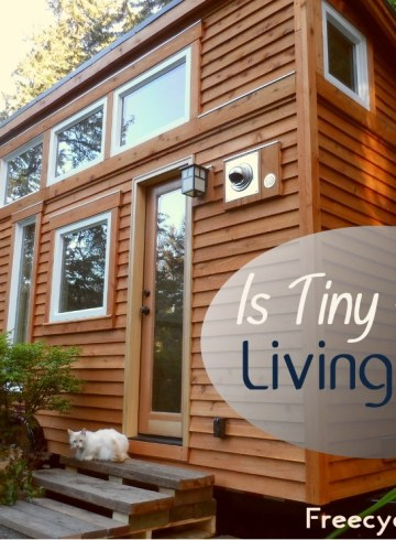 Is Tiny House Living Fun