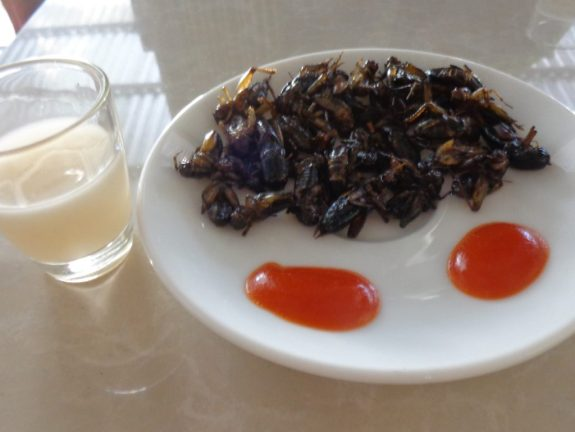 Crickets for a snack in Dalat, Vietnam