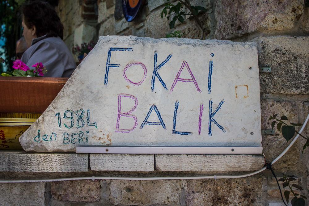 FunkTravels Eski Foca