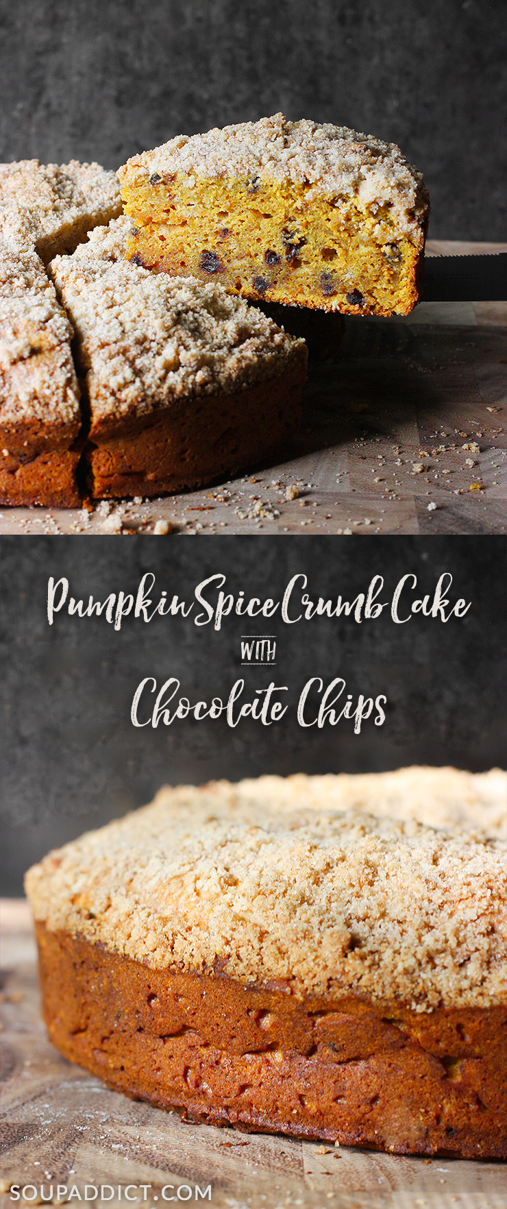 Pumpkin Spice Crumb Cake with Chocolate Chips from Soupaddict.com