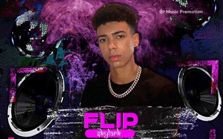 Flip Skylark