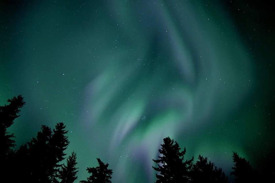 Northern Lights Amazon