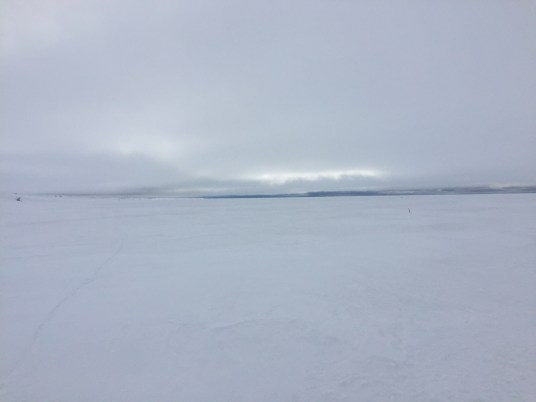 Looking north out onto the sea ice from close to shore.
